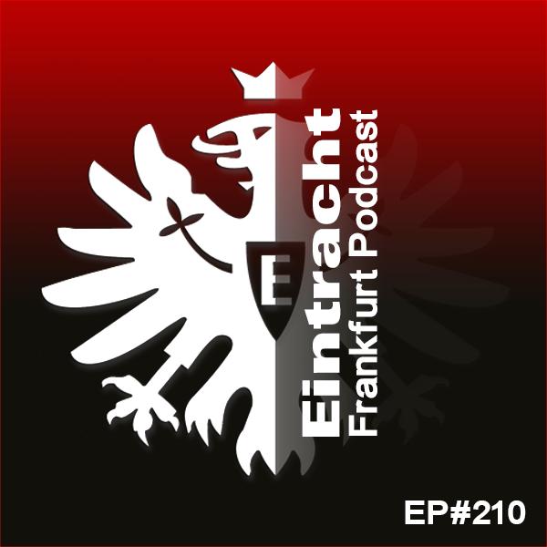 EP#210 - teammarvin