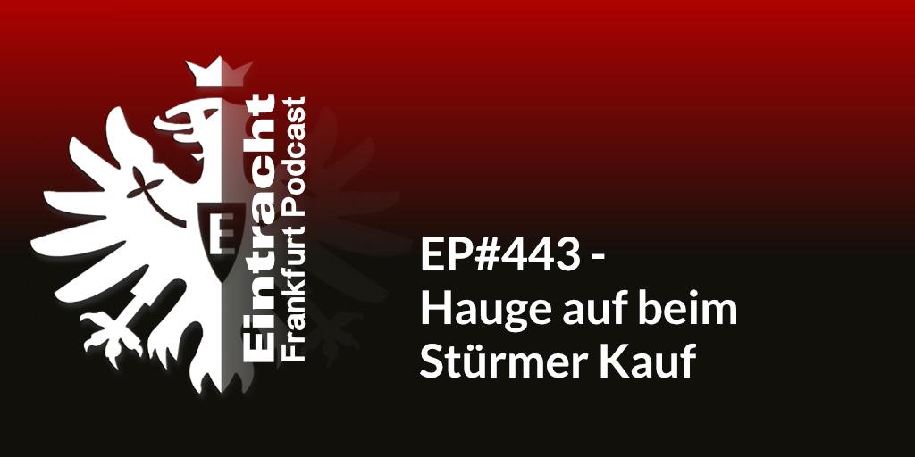 EP#443 - Hauge auf beim Stürmer Kauf